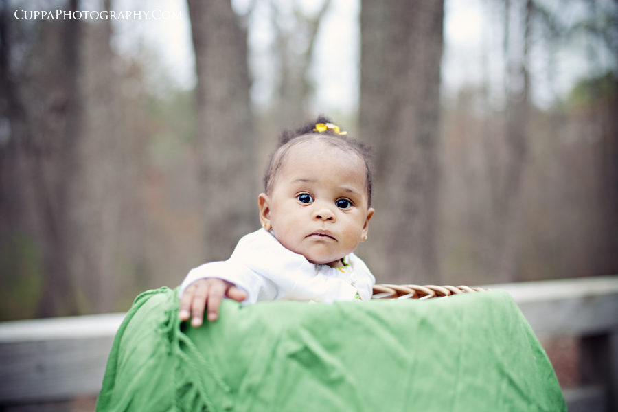 Raleigh, Durham, Child, Baby, Family, Photographer, Umstead Park