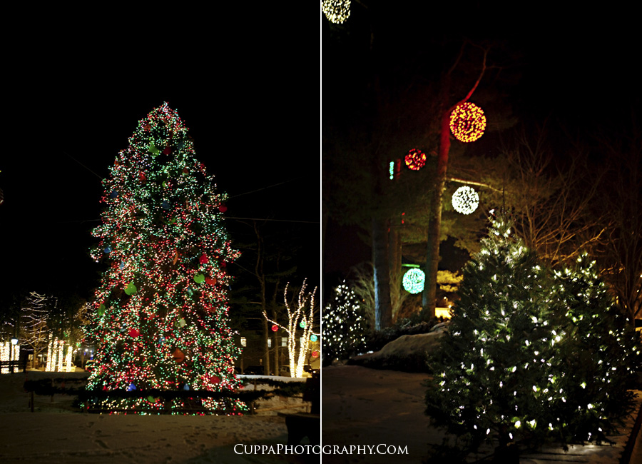 Maine wedding photographer, Freeport, LL Bean Christmas