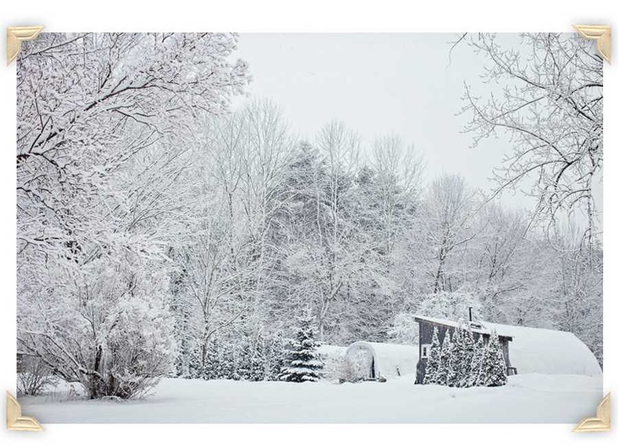 Freeport_Maine_Snow_Winter_Photography-007