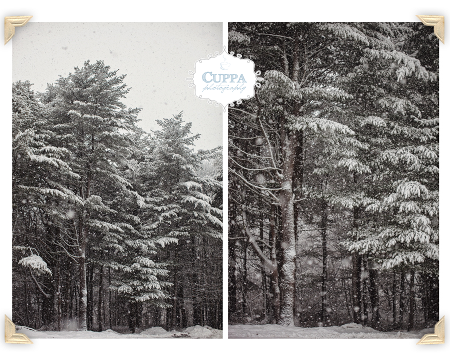 Freeport_Maine_Snow_Winter_Photography-011