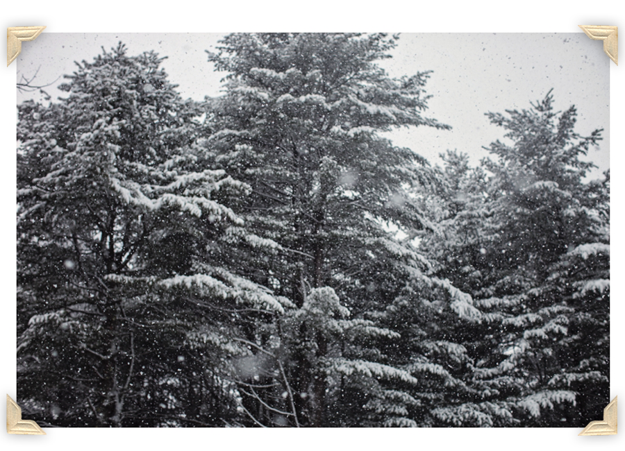 Freeport_Maine_Snow_Winter_Photography-012