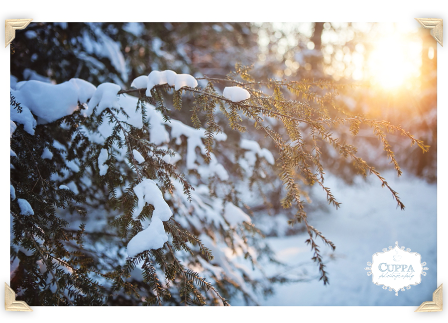 Maine_Wedding_Photographer_Outdoor_Sunrise_Bradbury_State_Park_Winter-007