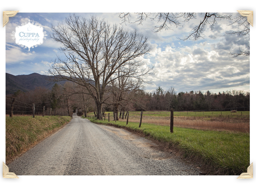 North_Carolina_SmokyMountains_CadesCove_Nantahala_mountains_river_outdoor_photography-006