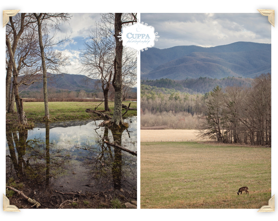 North_Carolina_SmokyMountains_CadesCove_Nantahala_mountains_river_outdoor_photography-011