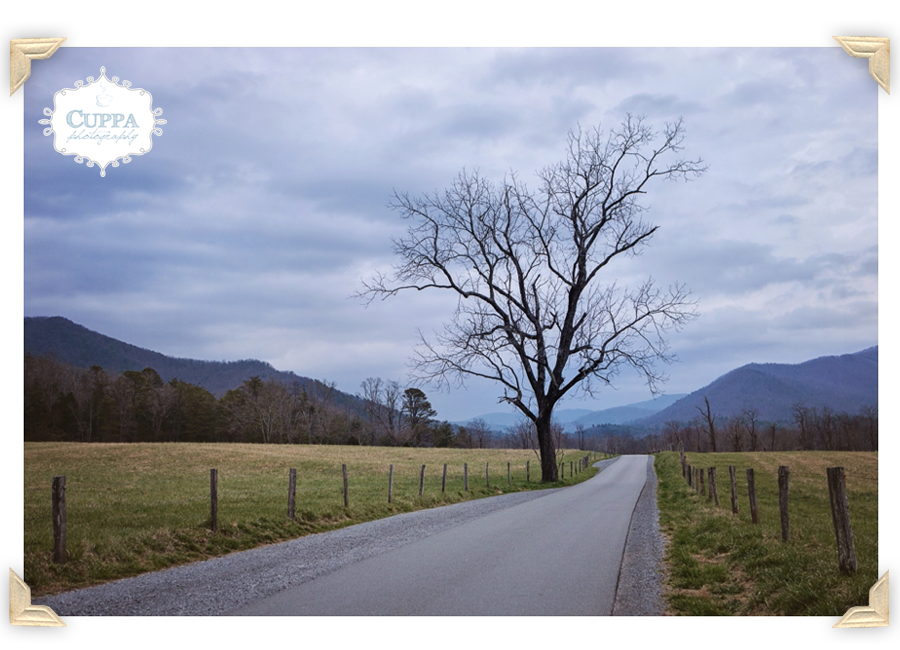 North_Carolina_SmokyMountains_CadesCove_Nantahala_mountains_river_outdoor_photography-017