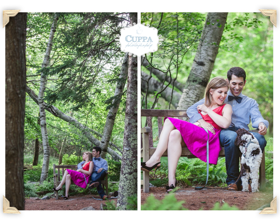 Mount_Desert_Island_Maine_Acadia_National_Park_Engagements-002