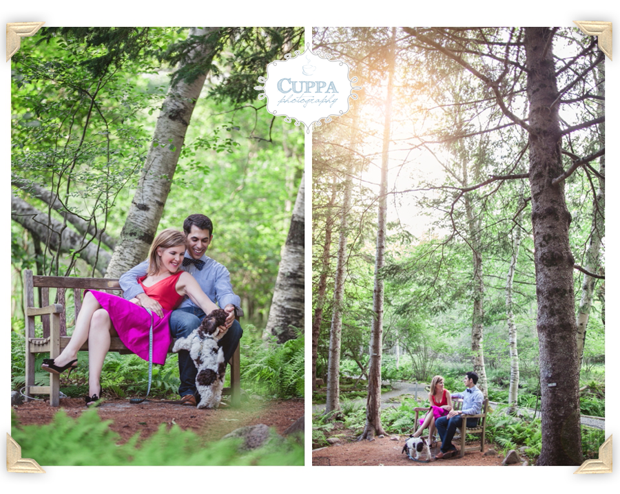 Mount_Desert_Island_Maine_Acadia_National_Park_Engagements-003