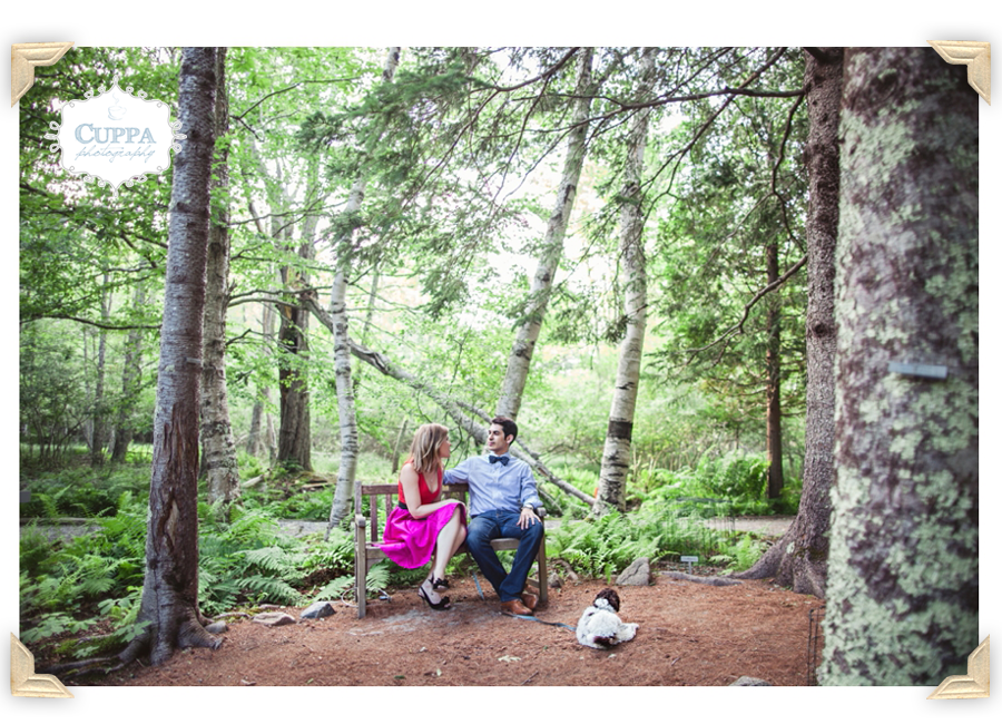 Mount_Desert_Island_Maine_Acadia_National_Park_Engagements-004