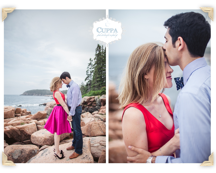 Mount_Desert_Island_Maine_Acadia_National_Park_Engagements-008