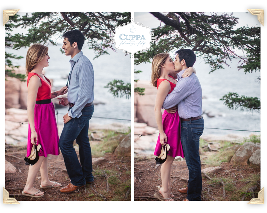 Mount_Desert_Island_Maine_Acadia_National_Park_Engagements-013