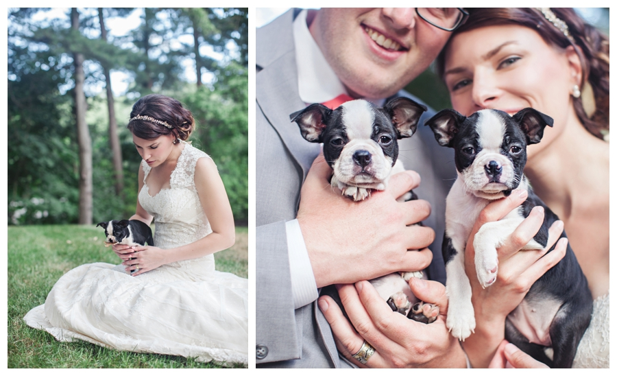 Maine_photographer_wedding_portraits_puppies_Massachusetts_Boston-004