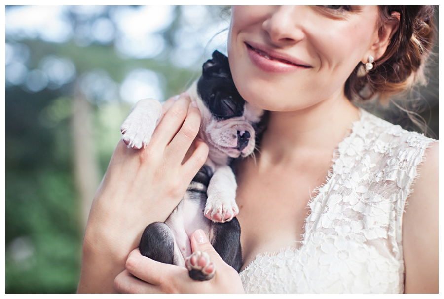 Maine_photographer_wedding_portraits_puppies_Massachusetts_Boston-007
