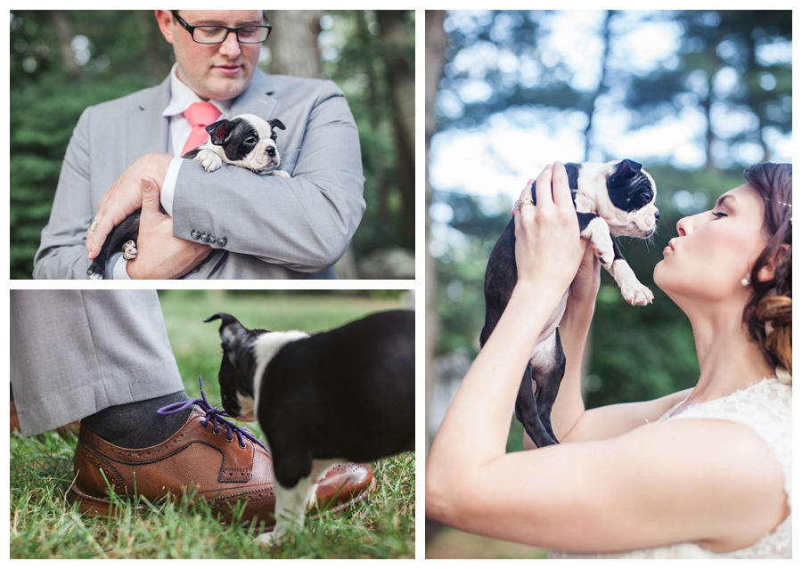Maine_photographer_wedding_portraits_puppies_Massachusetts_Boston-008